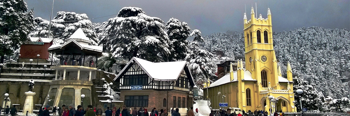 shimla tour by tempo traveller
